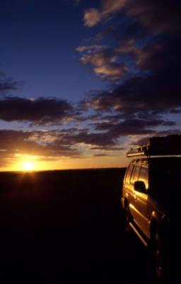 simpson desert camp sunset image