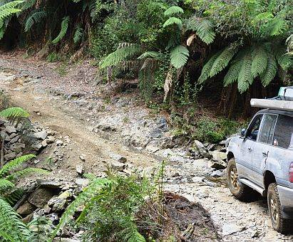 track to Montezuma Falls, Tasmania on Australian 4x4 Tag Along Tour trip