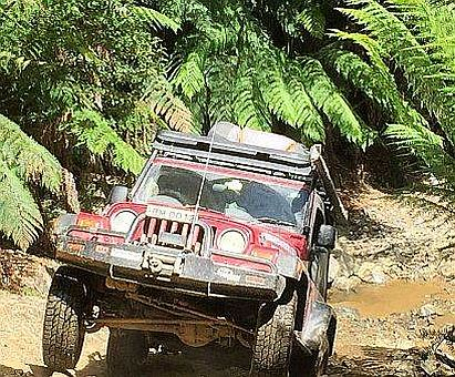 Wrangler on way to Montezuma Falls, Tasmania on Australian 4x4 Tag Along Tours trip